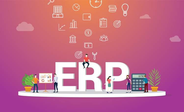 ERP PNG